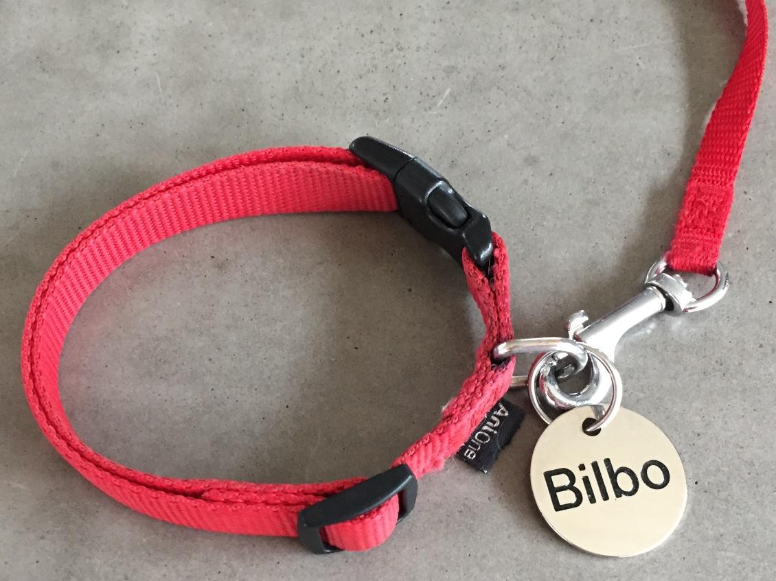 Mein neues Halsband